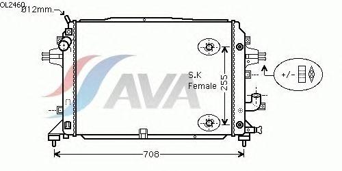 Радиатор, охлаждение двигателя AVA QUALITY COOLING OL2460
