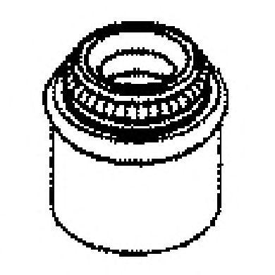 Сальник клапана, маслосъемный  колпачок AJUSA 12002900