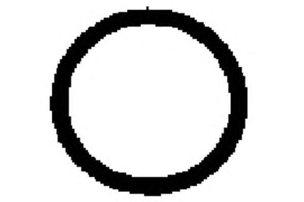 Прокладка впускного коллектора PAYEN JD5891