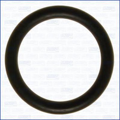 Прокладка впускного коллектора AJUSA 16072500